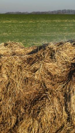 Obornik koński idealny pod pieczarki ,oraz inne uprawy rolne .
