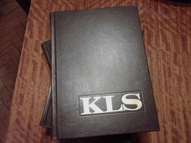Dicionario enciclopedico koogan larousse seleçoes