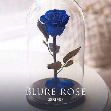 Роза в стеклянной колбе+( Коробка,Гравировка,Лепестки).Тренд 2020 года