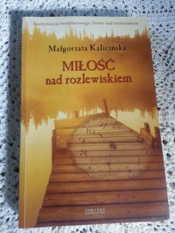 Miłość nad rozlewiskiem M. Kalicińska