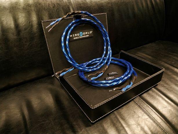 WireWorld Oasis 8 kable głośnikowe konfekcjaTrans Audio Hi-Fi pro