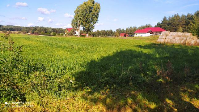 Działka pod zabudowę rolna