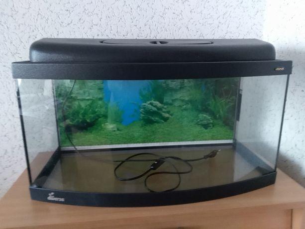 akwarium profilowane 60 cm