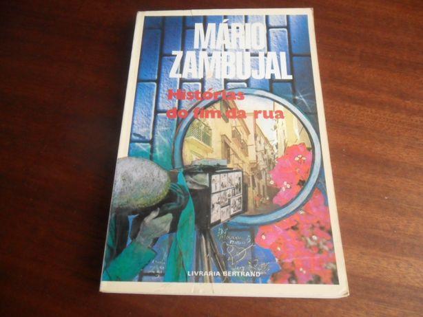 """""""Histórias do Fim da Rua"""" de Mário Zambujal"""