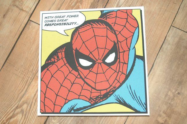 Spiderman 30x30 DC Comics