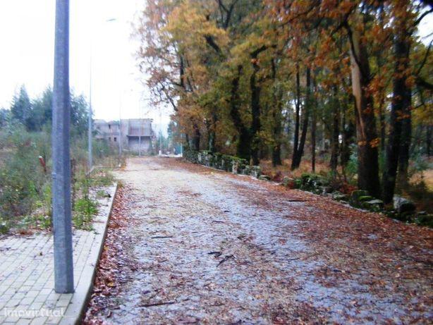 Terreno  Venda em Pedralva,Braga
