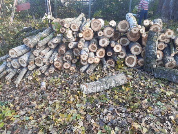 Opał drewno metry czereśnia topola