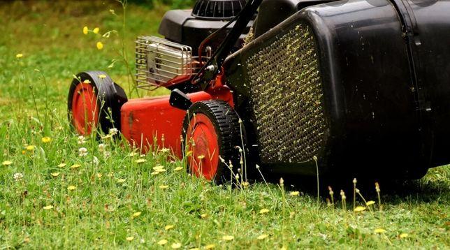 Kompleksowe usługi sprzątające oraz opieka zieleni
