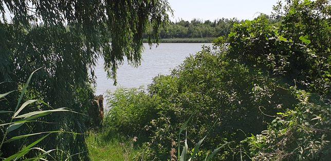 Продам землю на берегу Дуная под дачу или бизнес