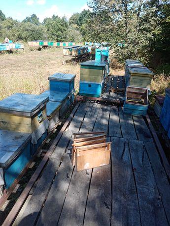 Прицеп для пчёл