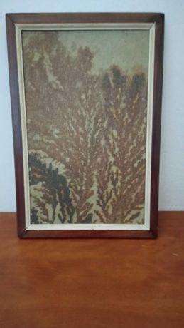 quadro dendritos do Brasil(Rio grande  retirado de rocha vulcânica)