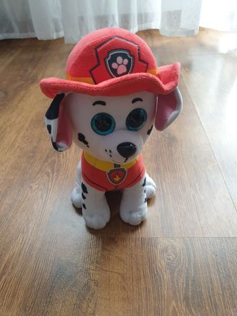 Marshall Psi Patrol