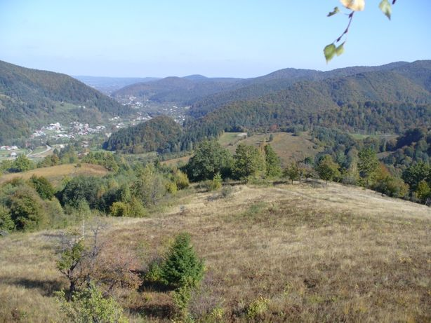 Продаж гори (10 ділянок) під гірськолижний курорт, с. Шешори