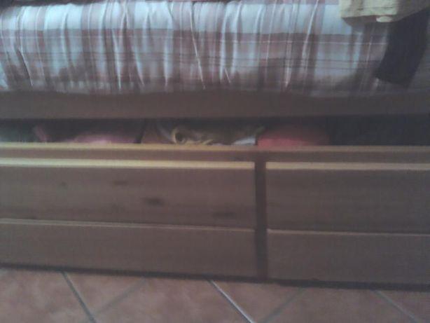 Cama dupla em madeira pinho Nova