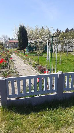Ogródek działkowy ROD