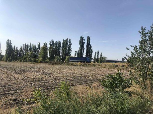 с.Иванков Продам Земельный участок 1,55 га