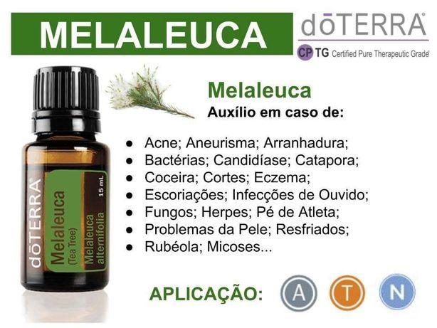 Óleo essencial Melaleuca