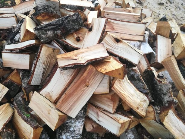 Drewno brzoza