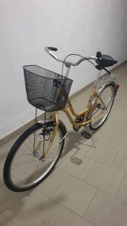 Rower damka duży