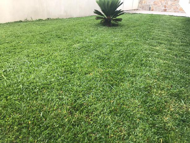Jardinagem&Limpeza de terrenos