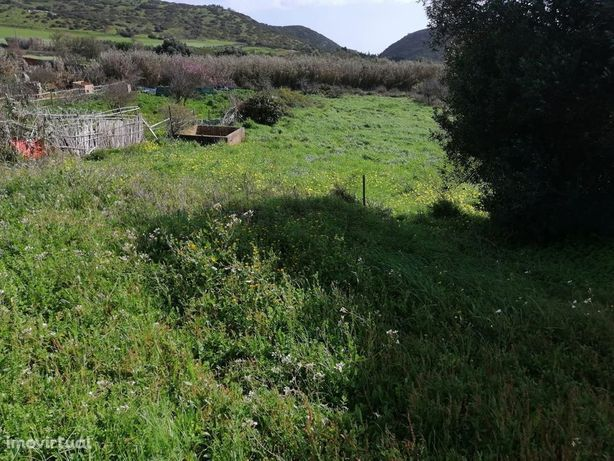 Terreno Rustico perto Praia Algarve