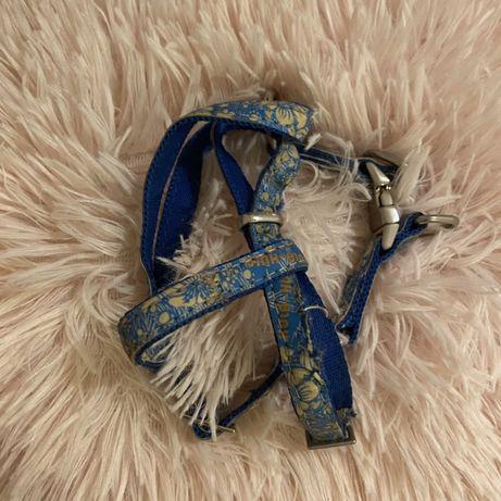 Szelki dla malego psa xs zolux envy hula