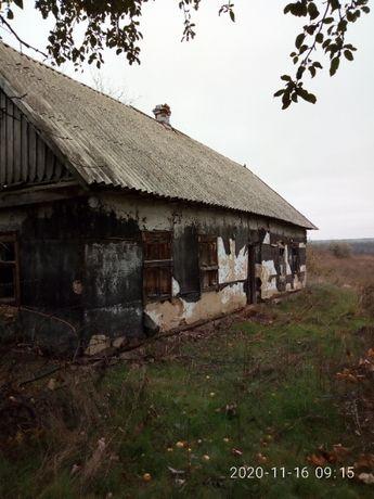 Продам хату в селе с участком земли
