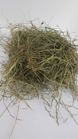 Siano łąkowe dla gryzoni i królików