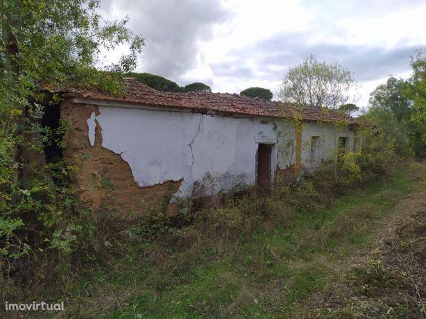 Duas ruínas e terreno com 17.000m2 perto de Tomar no centro de Portuga