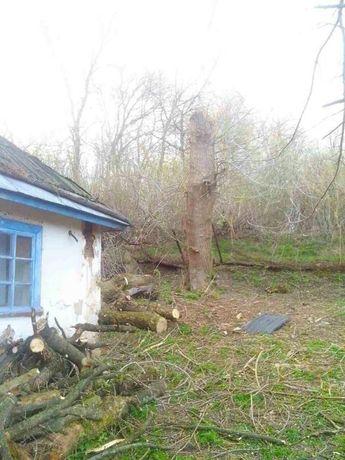 Продам земельный участок с домом с. Пии, Киевская обл. 80 км от Киева.
