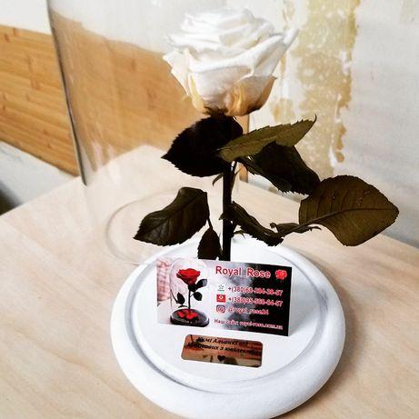 Роза в стеклянной колбе +КОРОБКА,ГРАВИРОВКА.НОВИНОЧКА 2019