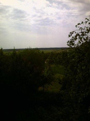 продам дом в живописной местности, Десна, леса