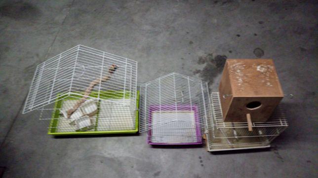 Gaiolas e ninho para pássaros pequenos