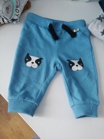 Spodnie dresowe z pieskami