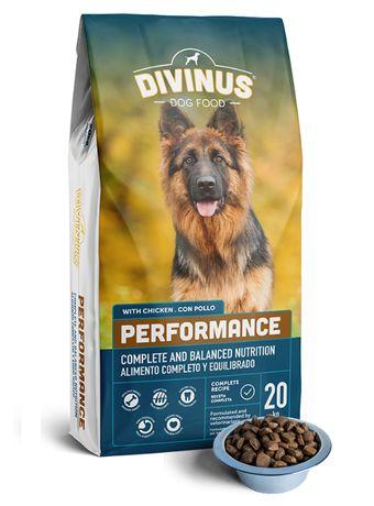Karma dla psów aktywnych DIVINUS PERFORMANCE 42% Mięsa 20 kg Wysyłka