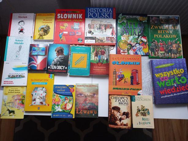 Książki, lektury, słowniki