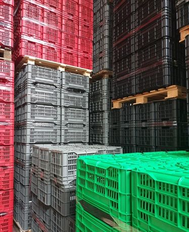 NOVAS! Caixas de Fruta / bricolage