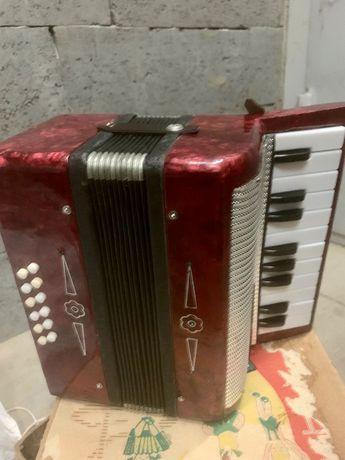Двухрядный одноголосный аккордеон