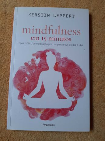 Mindfulness em 15 minutos -livro novo