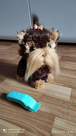 Інтерактивний пес, FurReal Shaggy Shawn