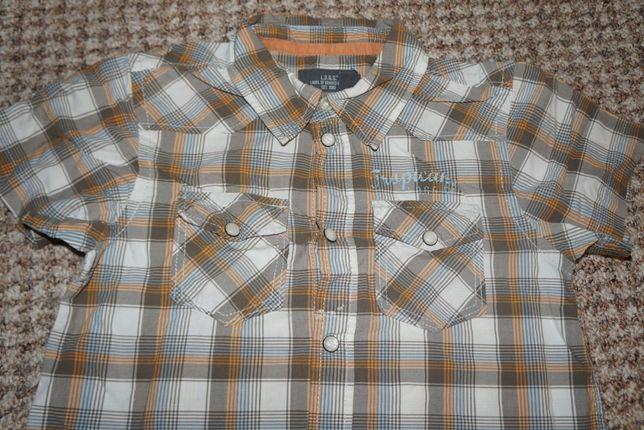koszula krótki rękaw kratka H&M L.O.G.G. zatrzaski, r. 128, 7-8 lat