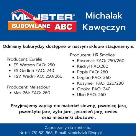 Kukurydza, oferta Majster Michalak