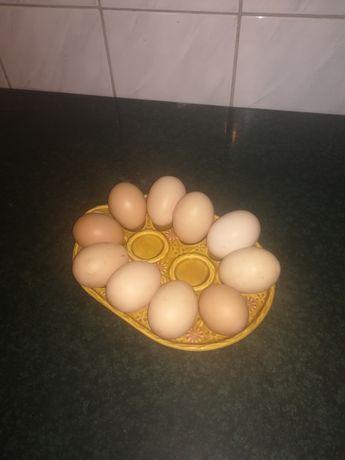 Swojskie wiejskie jajka