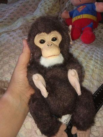Новорожденная Интерактивная обезьянка Hasbro FurReal