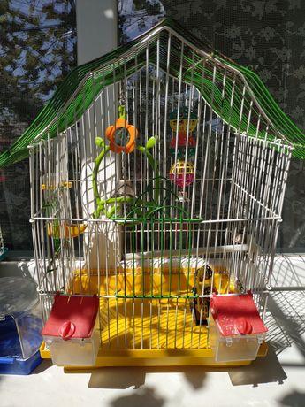 Клетка для попугаев, укомплектована полностью
