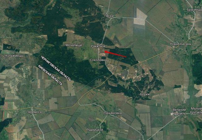 Продам участок, Бобровицкий р-н, Соколовка-Ракитное.