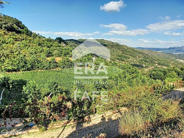 Terreno com 2.750 m2 em Ribas - Celorico de Basto