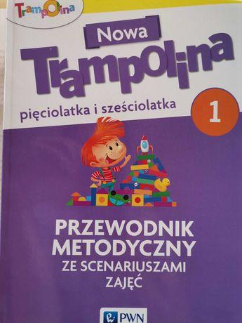 Nowa Trampolina pięciolatka i sześciolatka Przewodnik metodyczny PWN