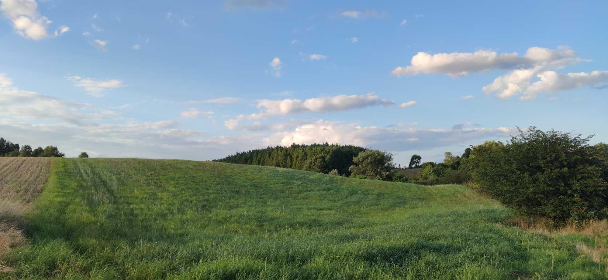 Działka rolna o pow. 1,6 ha
