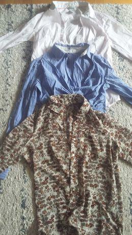 Ubrania ciążowe hm mexx c&a mango mega paka rozm S i M